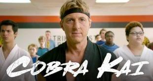 Το Cobra Kai στο Netflix