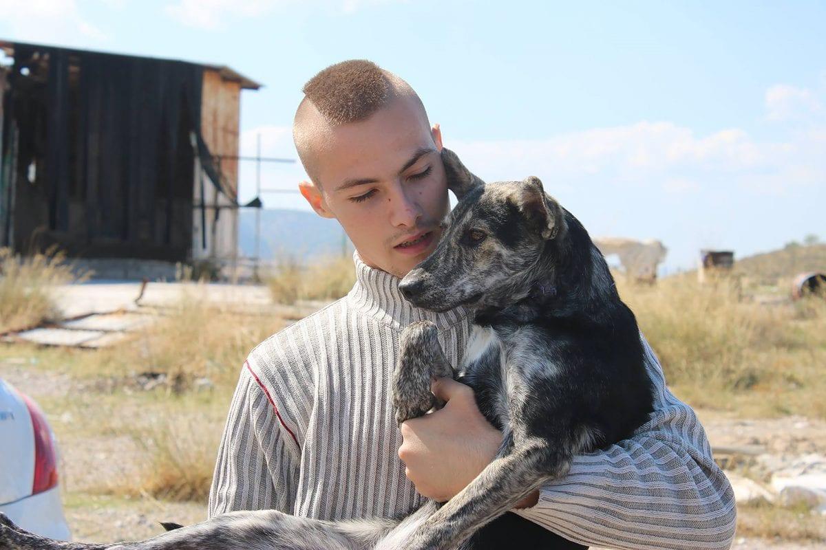 διαδραστική πλατφόρμα ψηφιακό κανάλι Ιδρύματος Ωνάση - ταινια greek animal rescue