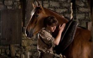 Το Άλογο του Πολέμου ταινία με ζώα ως πρωταγωνιστές