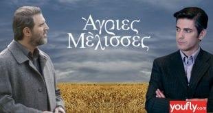 Σε κολάζ οι ηθοποιοί Γάλλος και Γκοτσόπουλος με φόντο τις άγριες μέλισσες