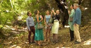 Ο ρόλος του Παρασκευά στο Χαιρέτα μου τον Πλάτανο στην σκηνή του δάσους