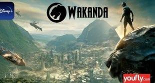 Εικόνα από τη Wakanda και τη Disney+