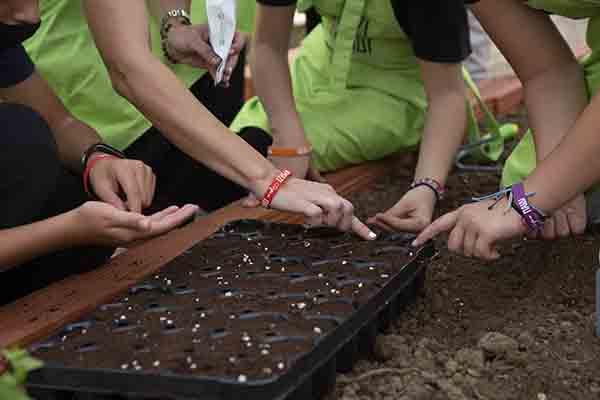 παιδιά βάζουν σπόρους στο χώμα