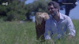 Ο Μιλτιάδης Σεβαστός στο δέντρο στις Άγριες Μέλισσες
