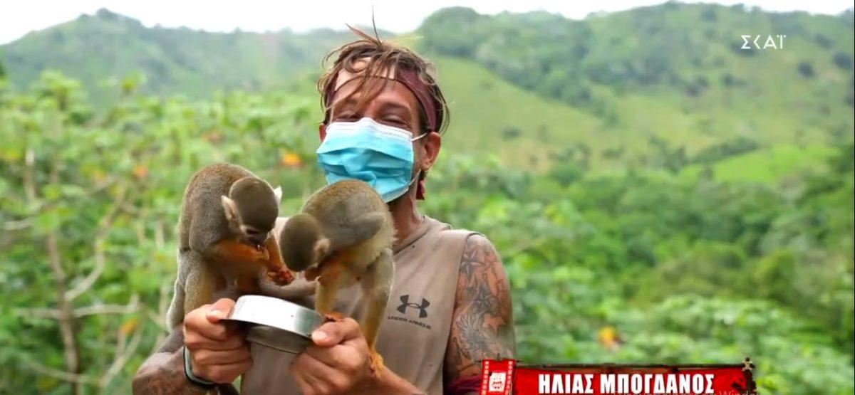 Ο Ηλίας αγκαλιά με μαϊμουδάκια