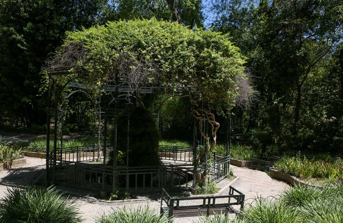 Zip the Day - Εθνικός κήπος