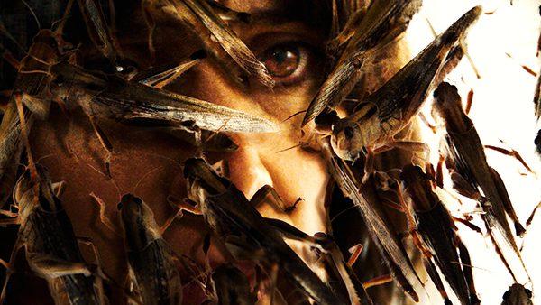 ταινία Το Σμήνος έρχεται στο Netflix