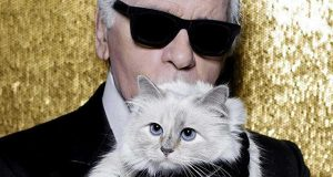 ο Karl Lagerfeld με τη γάτα του - Zip the day